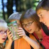 Students-looking-at-Bug-in-Jar
